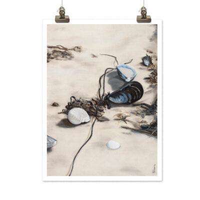 Art print Bland musslor och tång (Mussels) by Frickum