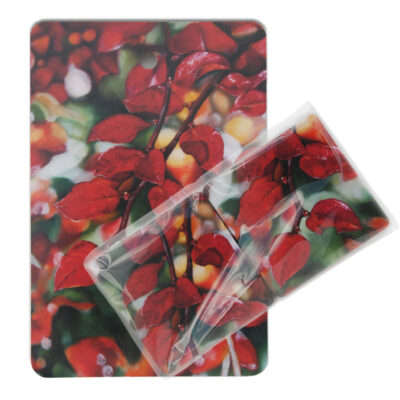 Art trivet and coasters by Frickum